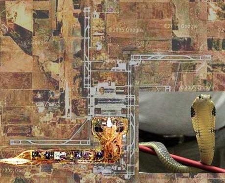 """Reptilian Airways -- Denver Airport Snake."""